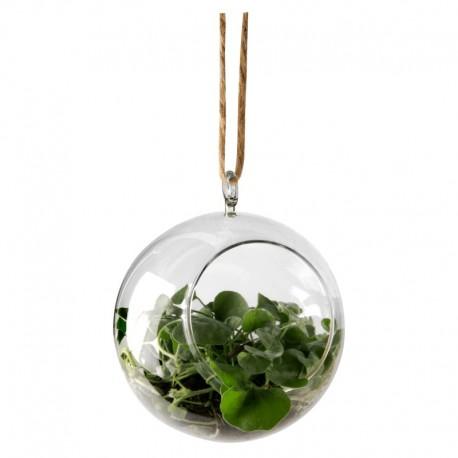 Dekorationsboll, ljushållare