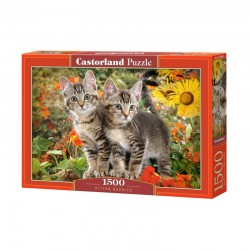 Pussel Kitten Buddies 1500 bitar